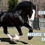 awesome-clydesdale