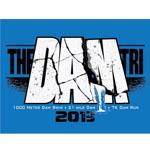 DamTri_2013